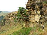 Drakensbergo Kalnai (Drakansberg)
