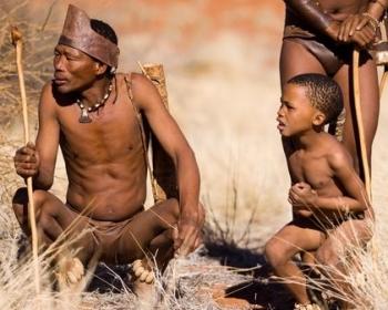 Pietų Afrikos saulė II